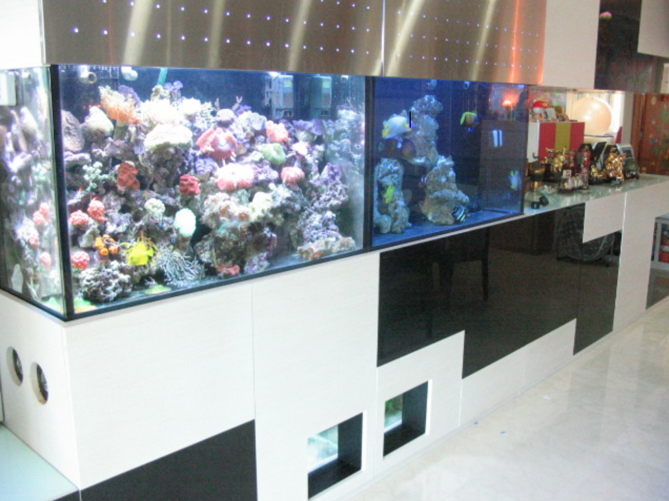Del Costa Condominium Design and Build Tank
