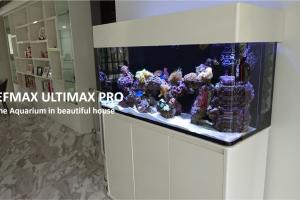 REEFMAX Ultimax-Pro Aquarium