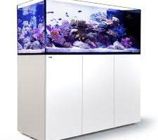 Red Sea Aquarium Tanks